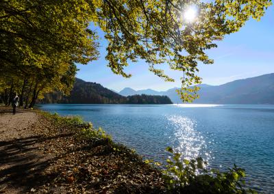 Herbst_am_Wolfgangsee